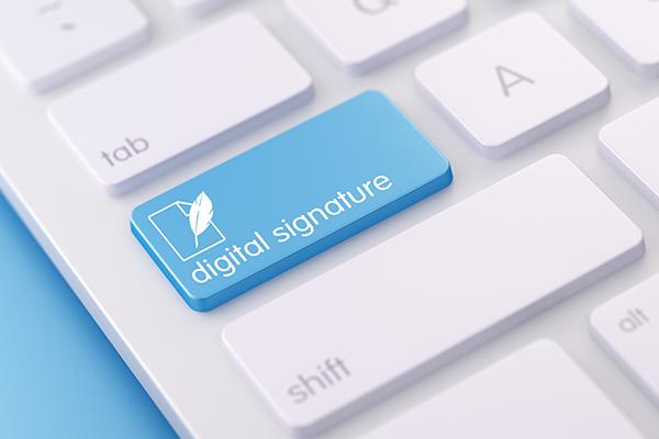 Digital E-Signature In PSE